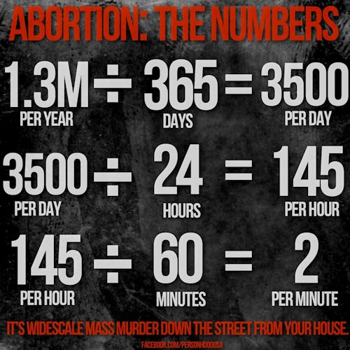 RainDrops of Life Abortion Statistics